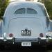 1936 Cord YOM License Plates