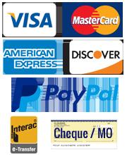 Ontario YOM licence plate Visa MasterCard Amex PayPal credit cards